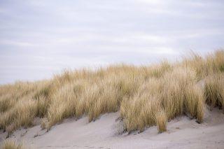 Herfst in Noord-Jutland, Denemarken