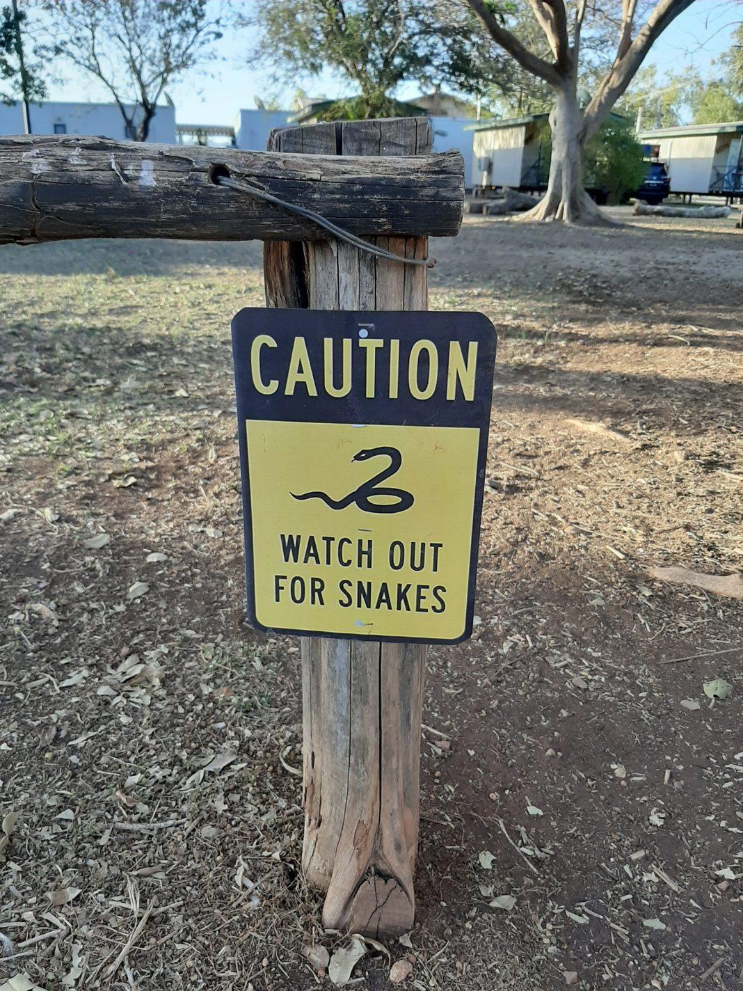 Pas op voor slangen!