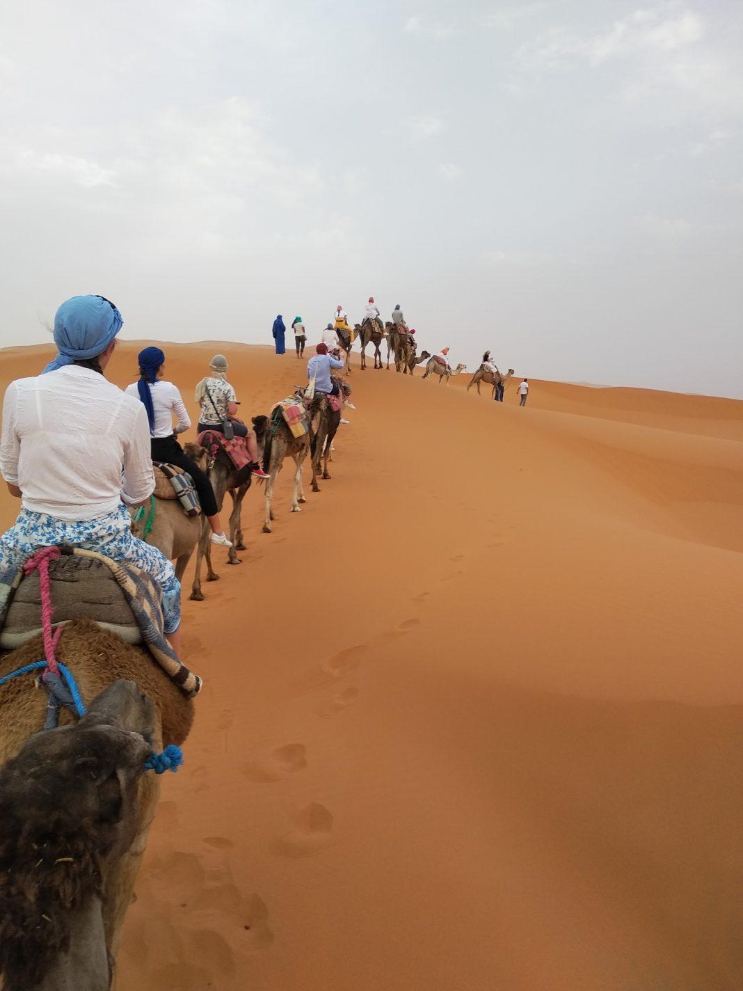 In karavaan hobbelden we een stukje de woestijn in