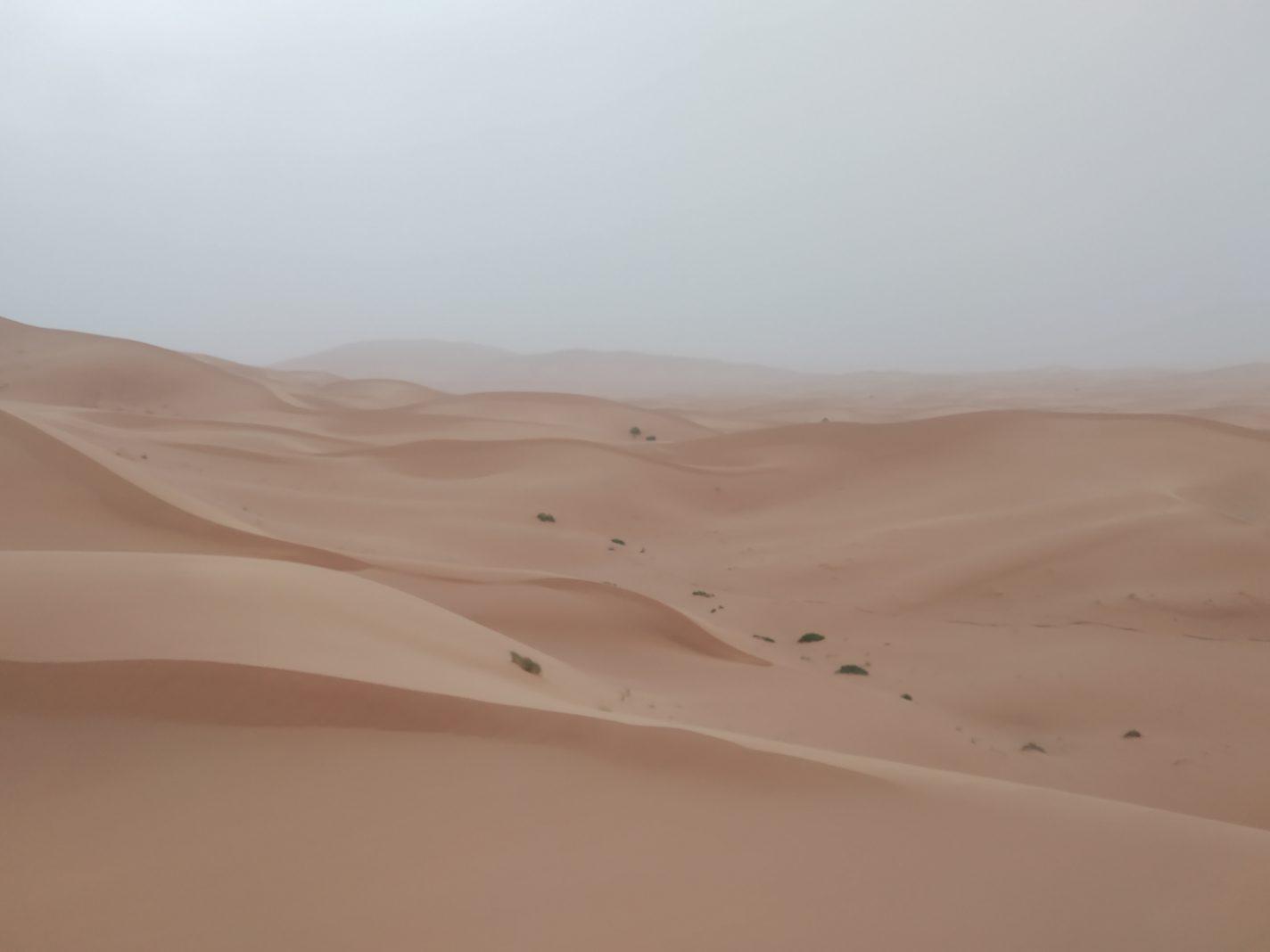 Oneindig zicht over het warme zand van de sahara