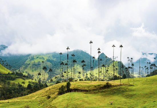Colombia: een land vol tegenstellingen en zeer bijzondere plekken!
