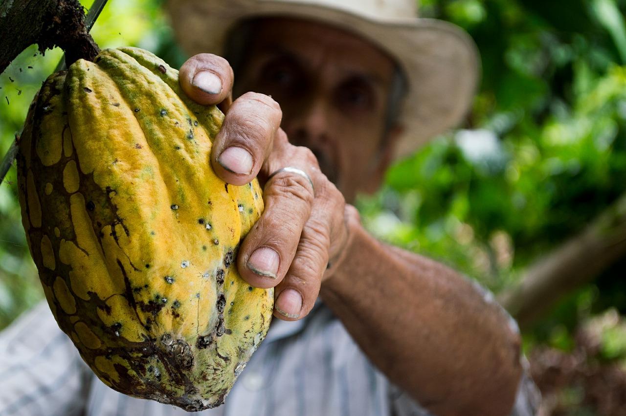Een Colombiaanse boer