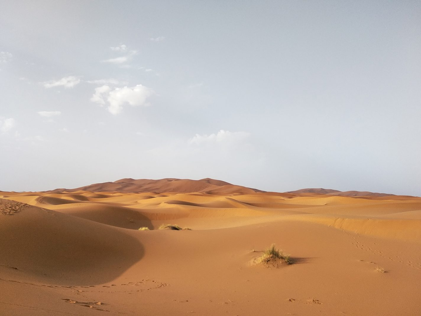 De Sahara na zonsopkomst