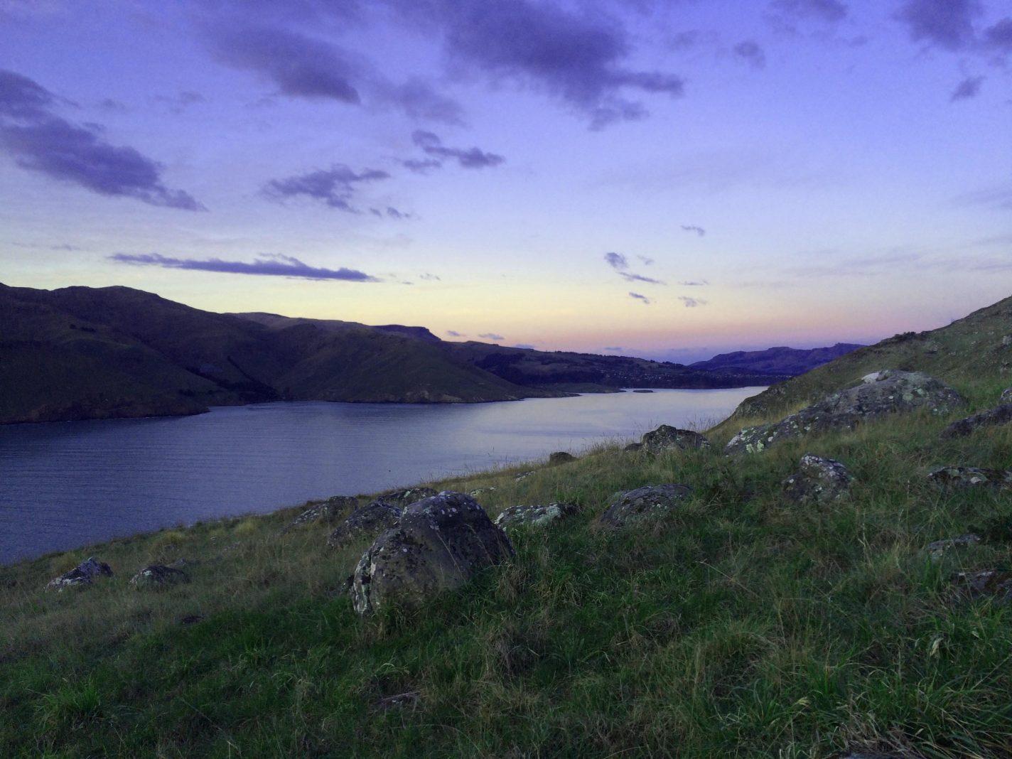 Godley Head - De meest indrukwekkende plekken Nieuw Zeeland