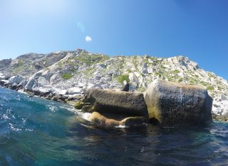Baja California Sur in Mexico: paradijs was nog nooit zo dichtbij