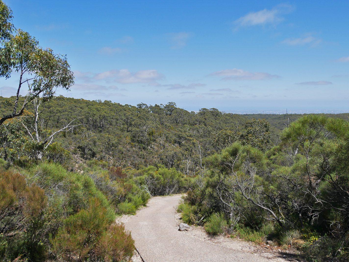 één groene oase, tijdens onze hike