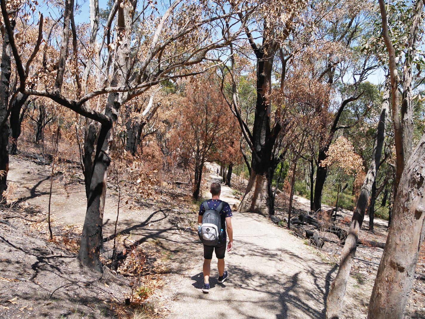 Een klein deel van dit gebied heeft een tijdje terug in brand gestaan - Mount Lofty