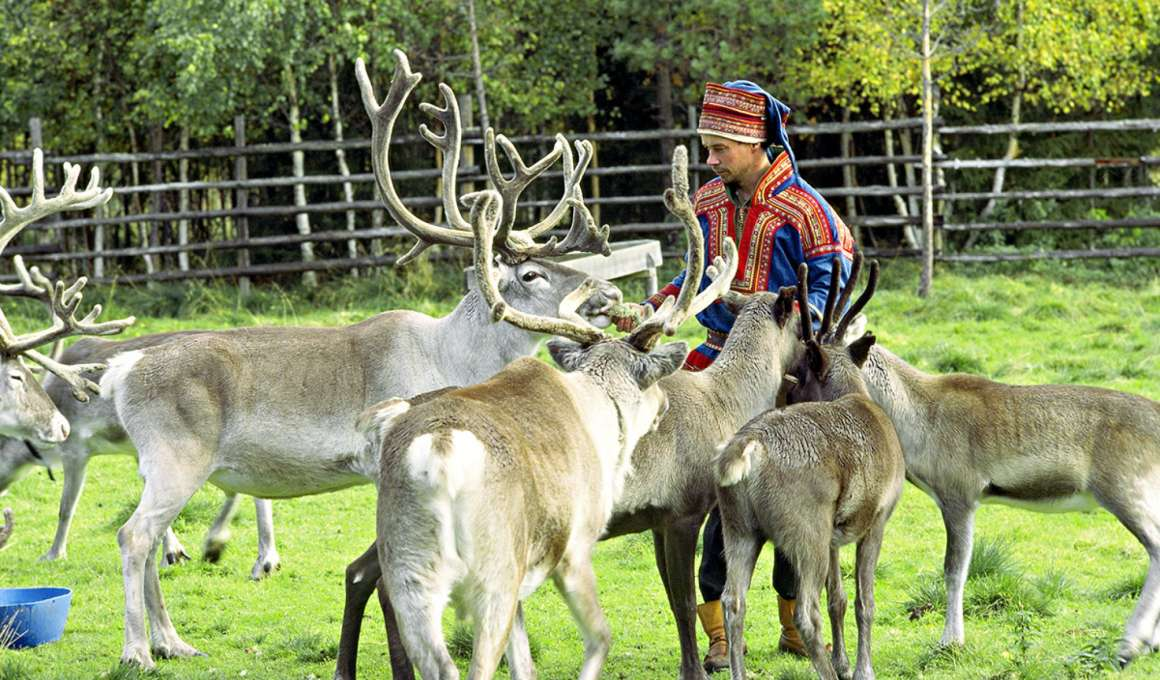 Maak kennis met de Sami cultuur