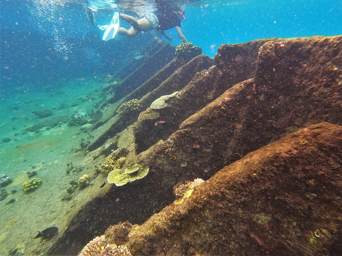 Snorkelen in de Solomons