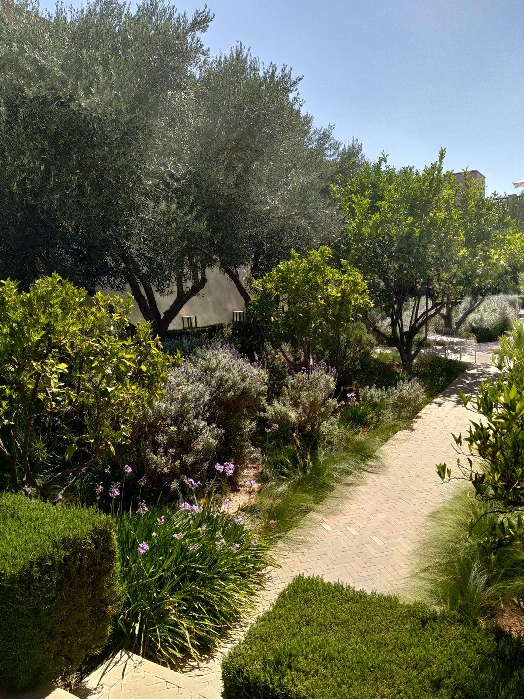 Secret Garden - Marrakech