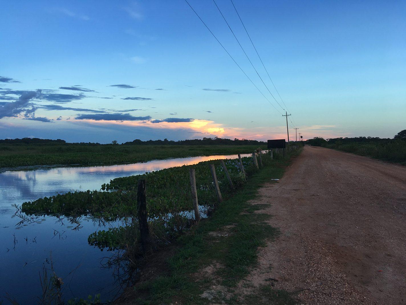 Pantanal in Brazilië - Interview met Nicole Matijssen