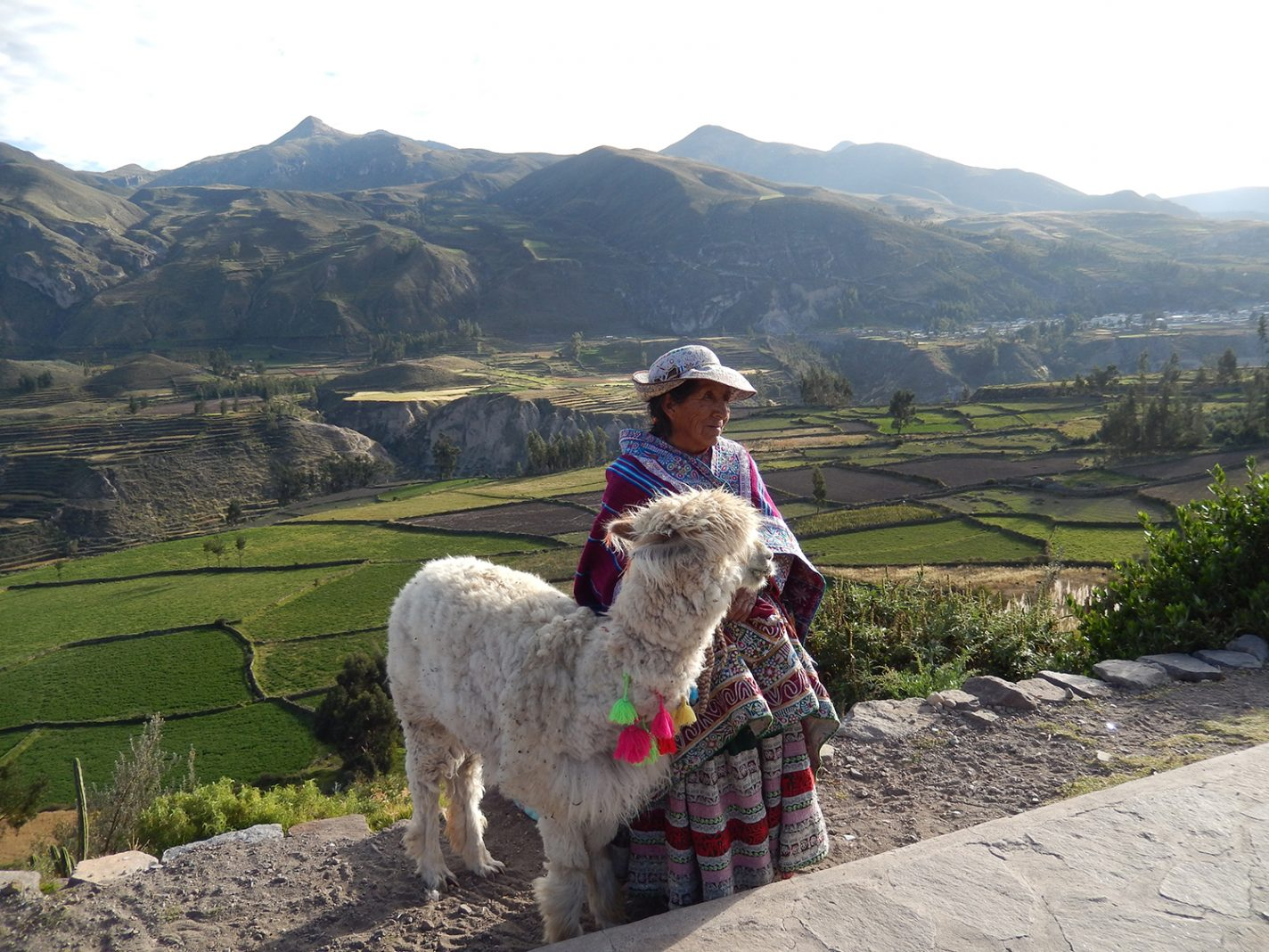 Colca Canyon in Peru - Interview met Nicole Matijssen