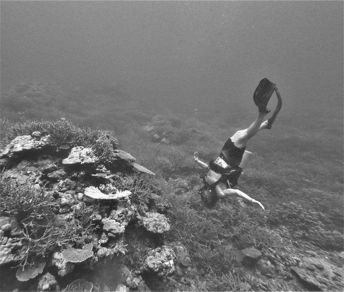 Snorkelen om de hoek