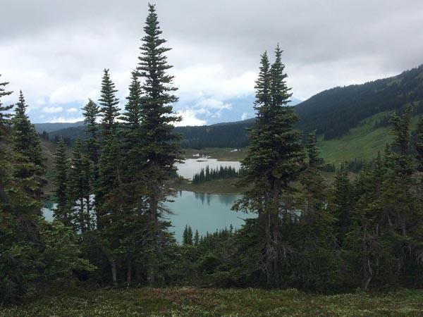 Panorama Ridge - de mooiste hikes in Whistler