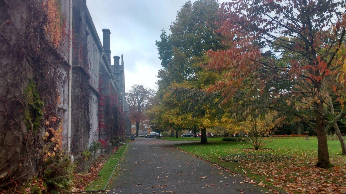 Park bij de University College Cork - stedentrip Cork