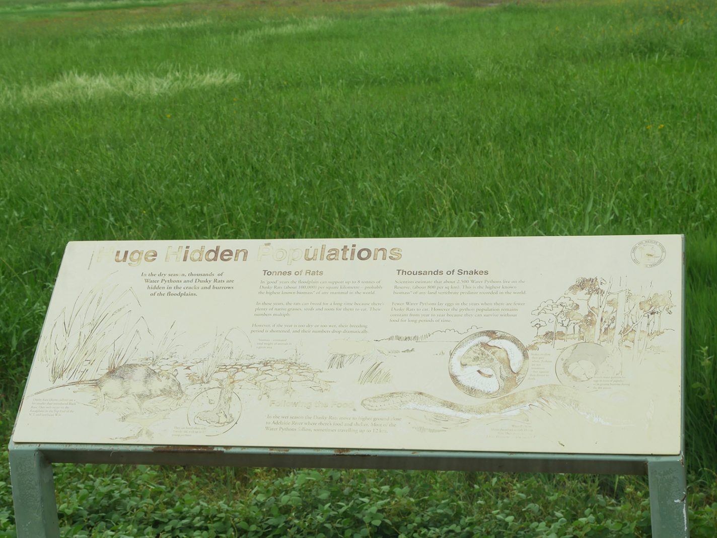 Informatiebord Fogg Dam Conservation Reserve