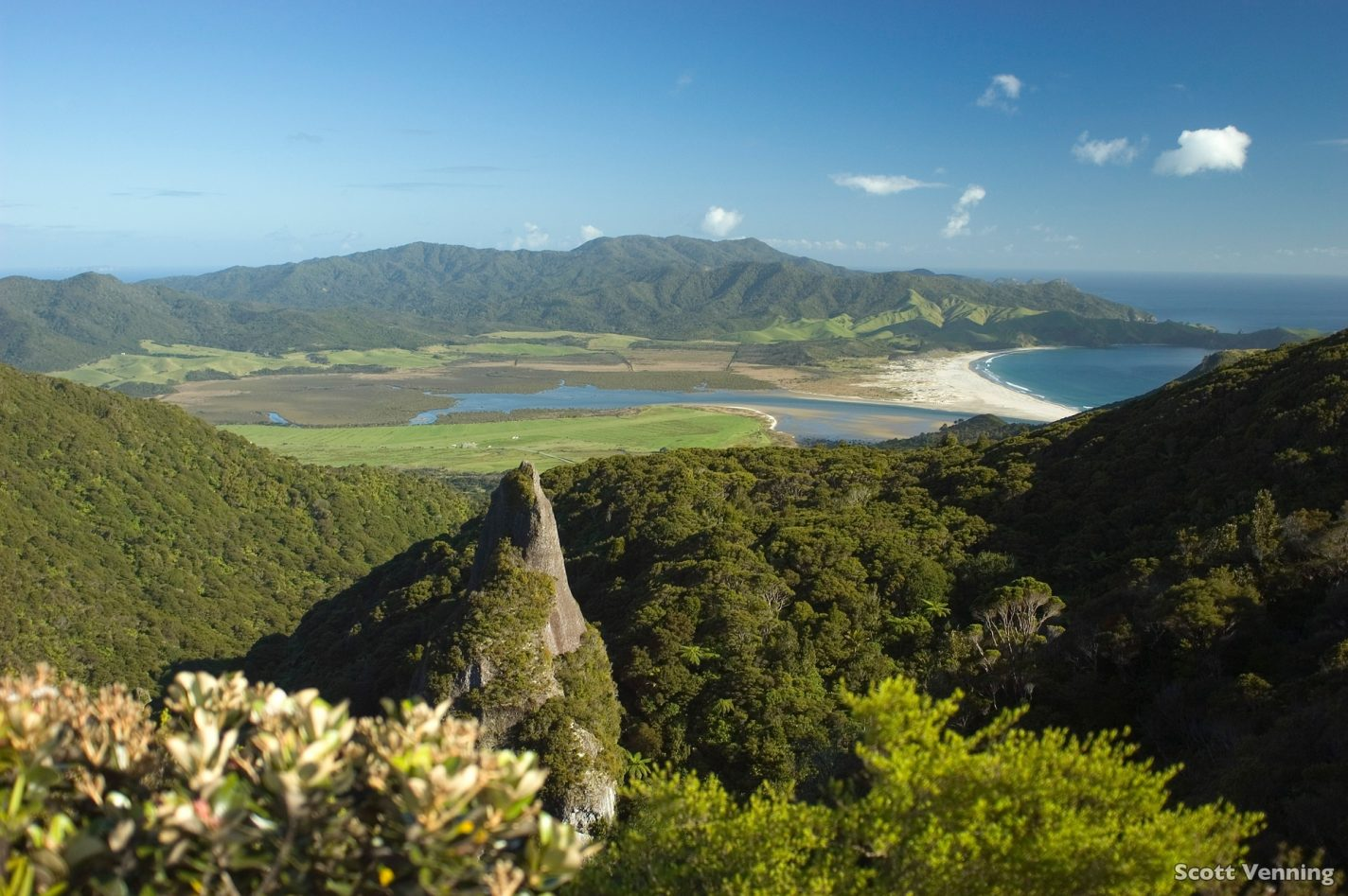 Windy Canyon Walk - Great Barrier Island