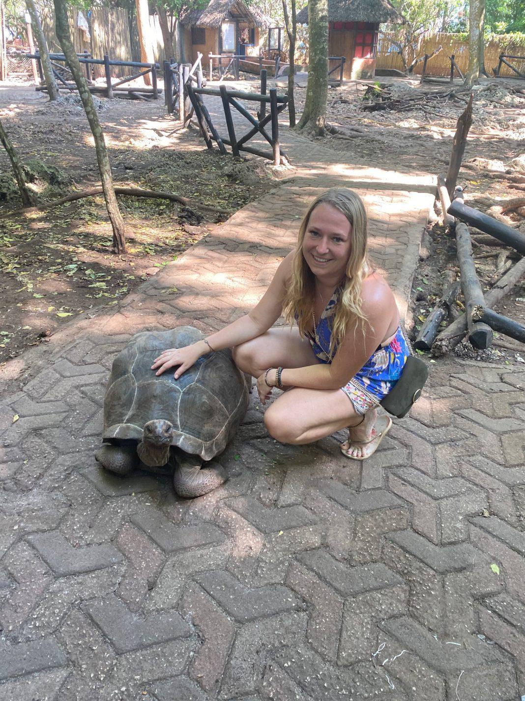 Landschildpadden op Prison Island - overland truck safari Afrika