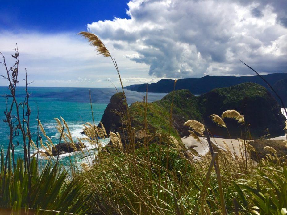Mooiste dagtrips vanuit Auckland