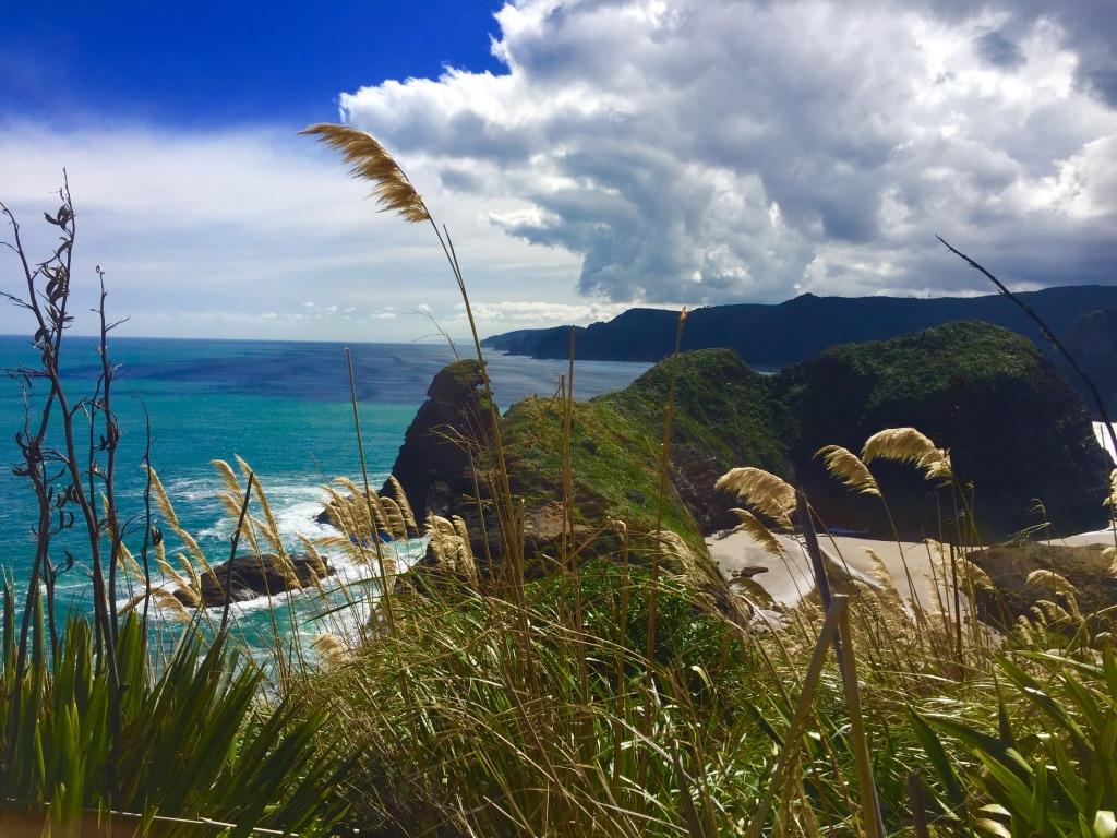 Piha Beach - Mooiste dagtrips vanuit Auckland
