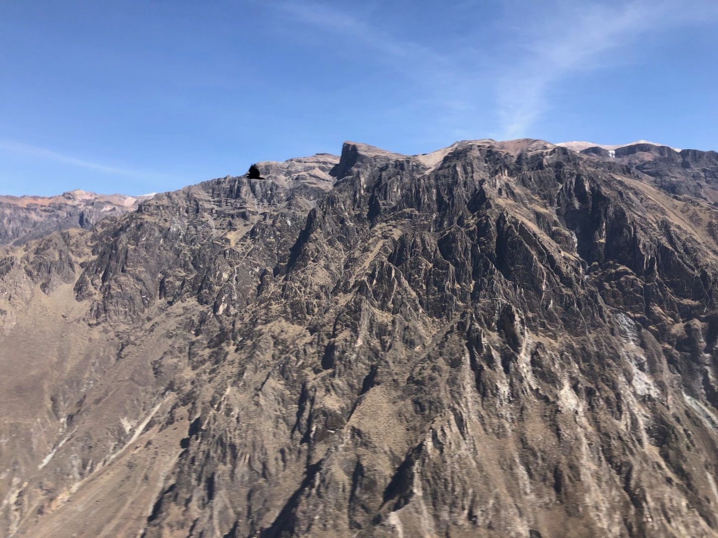 Colca Canyon - reisblog over Peru