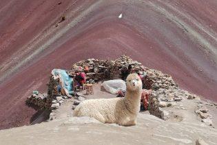 Reisblog over Peru: reistips en reiservaringen