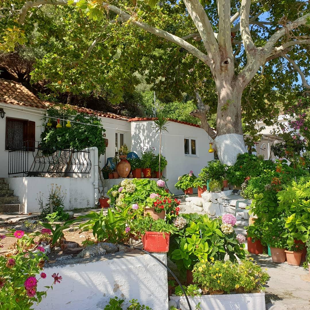 Typisch Griekse huisjes op Samos - Bezienswaardigheden Karlovasi op Samos