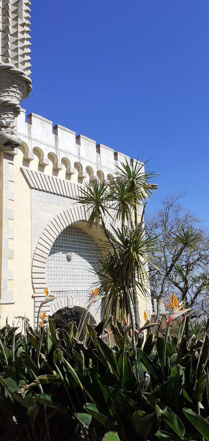 Exotische bloemen rondom het paleis, zoals de Bird of Paradise - Omgeving van Lissabon