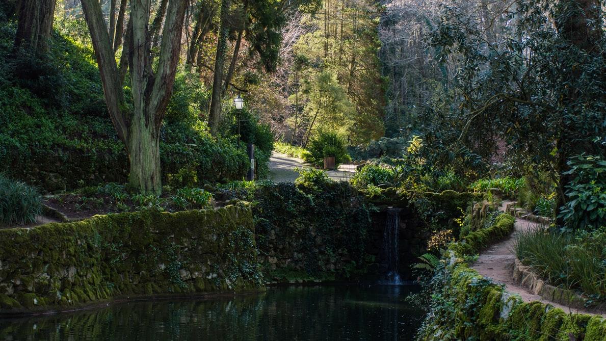 Het hoog gelegen en bosrijke Parque da Pena