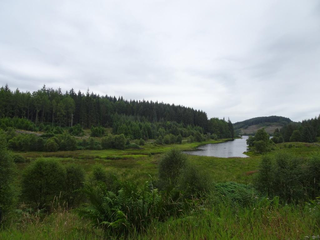 De prachtige natuur in het natuurpark Loch Lomond and the Trossachs - Schotland