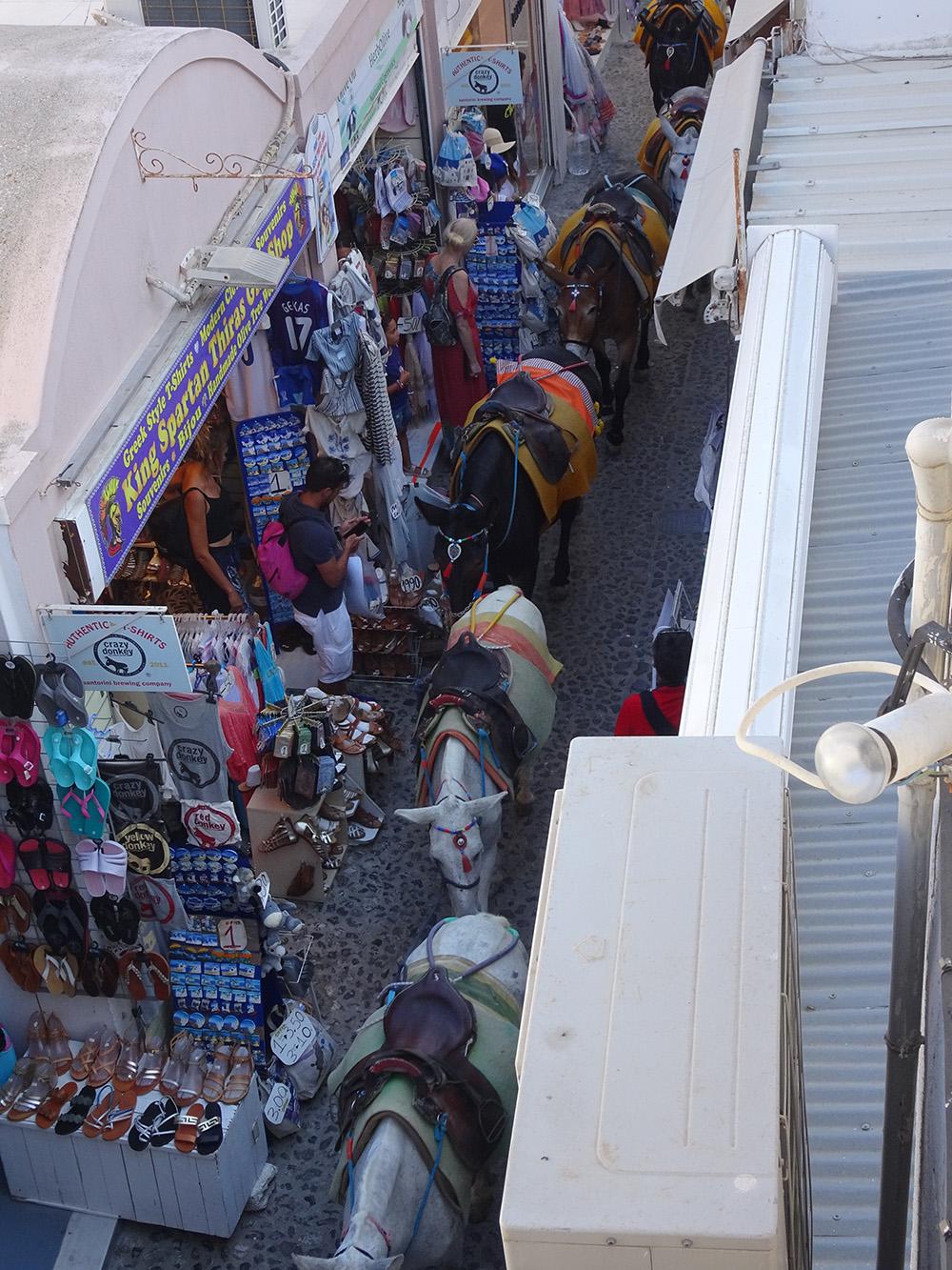 Ezeltjes in de straten van Fira