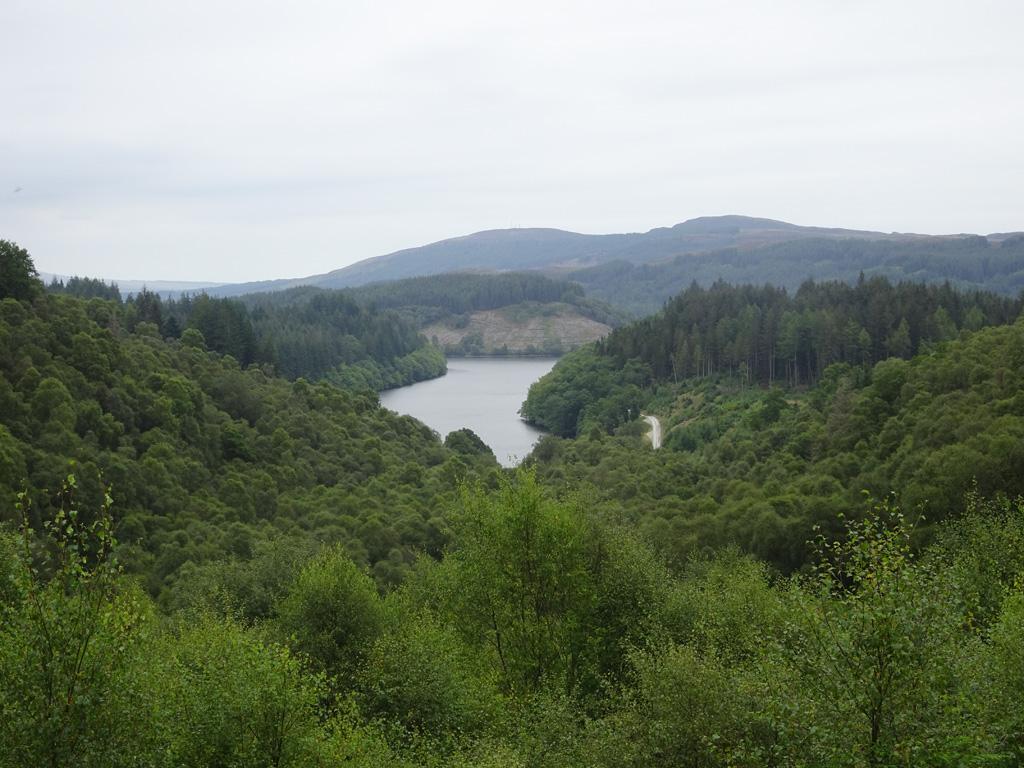 Forest Drive - Loch Lomond - Schotland