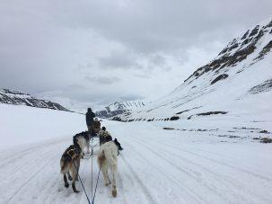 Svalbard Spitsbergen - het einde van de wereld