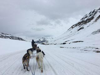 Svalbard (Spitsbergen): het einde van de wereld