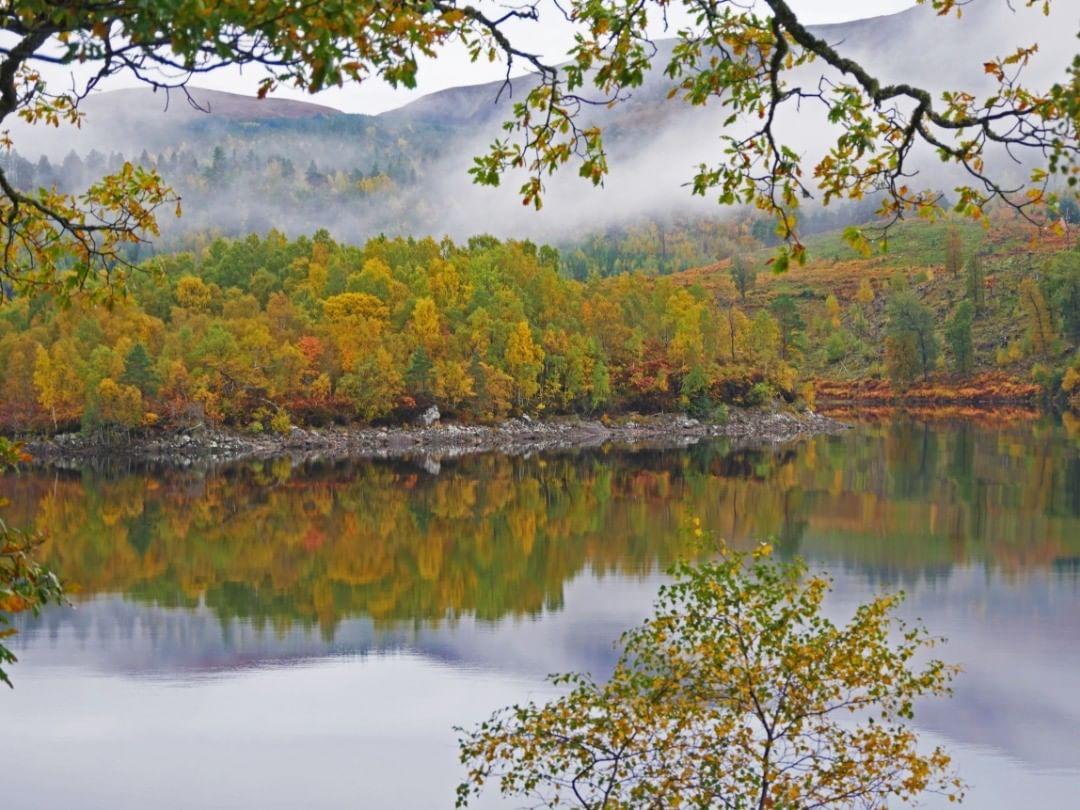Op deze plek in Schotland nam ik alle tijd om deze prachtige herfstbomen erop te krijgen