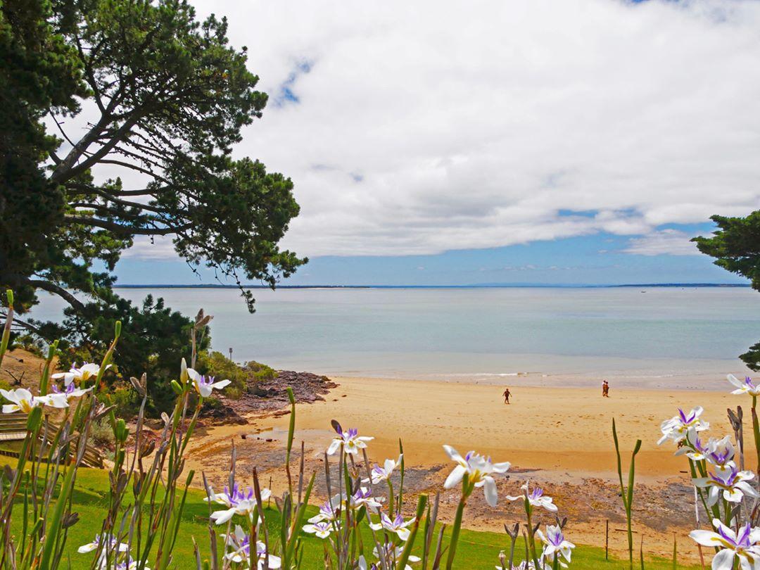 Zonder deze kleurrijke bloemen was deze foto van een strand op Phillip Island in Australië een stuk saaier geweest - Beste reisfoto