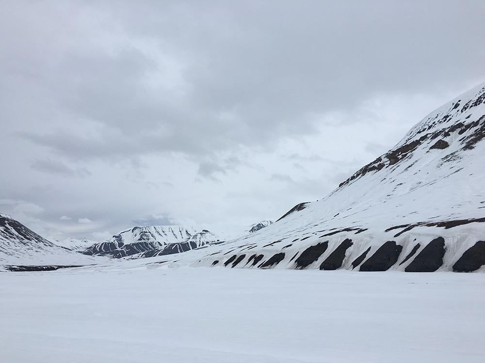 Groot wit deken van sneeuw - magisch mooi.