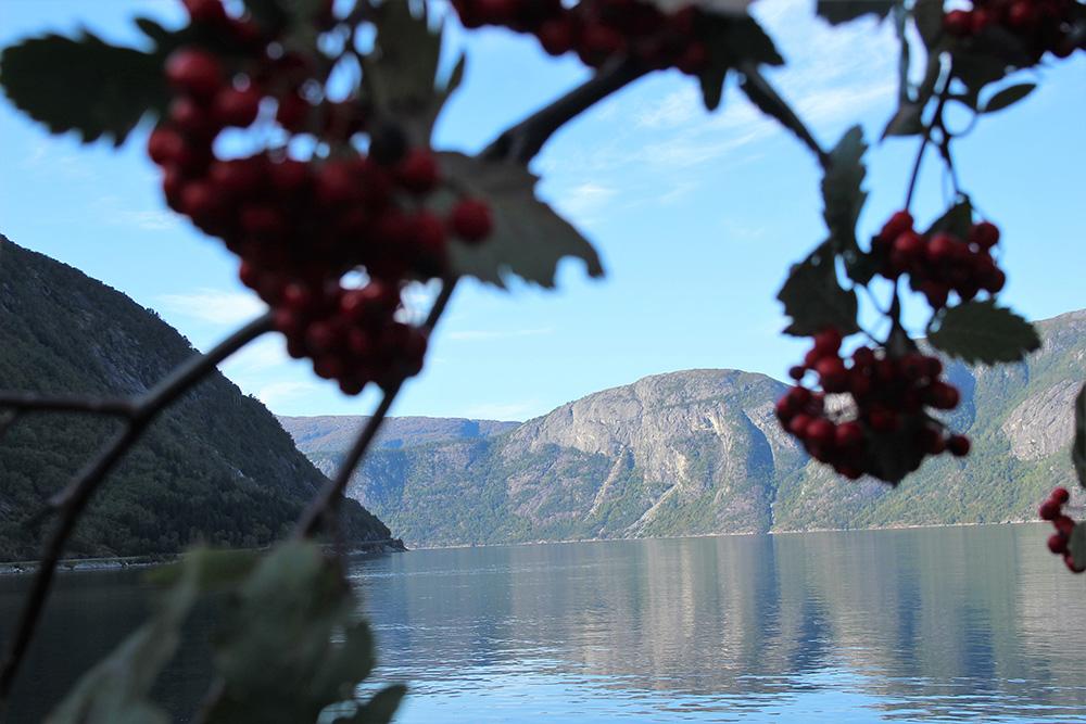Kleurrijke en afwisselende landschappen in nationaal park Hardangervidda