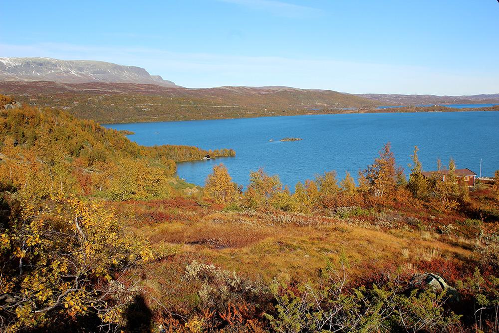 Kleurrijke en afwisselende landschappen in nationaal park Hardangervidda - Zuid-Noorwegen