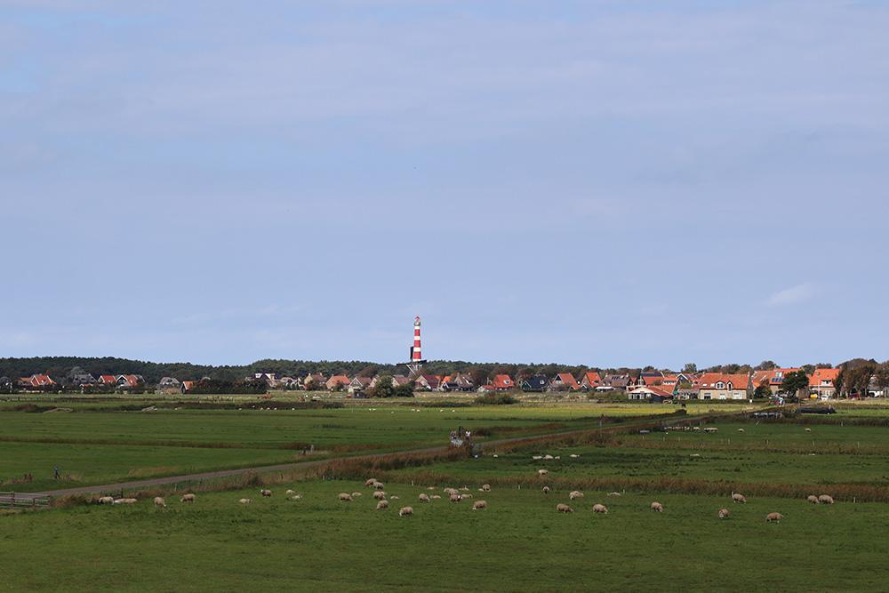 Uitzicht op het dorp Hollum, gelegen in het westen van Ameland