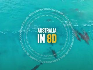 Australië in 8D: een hele gave ervaring!