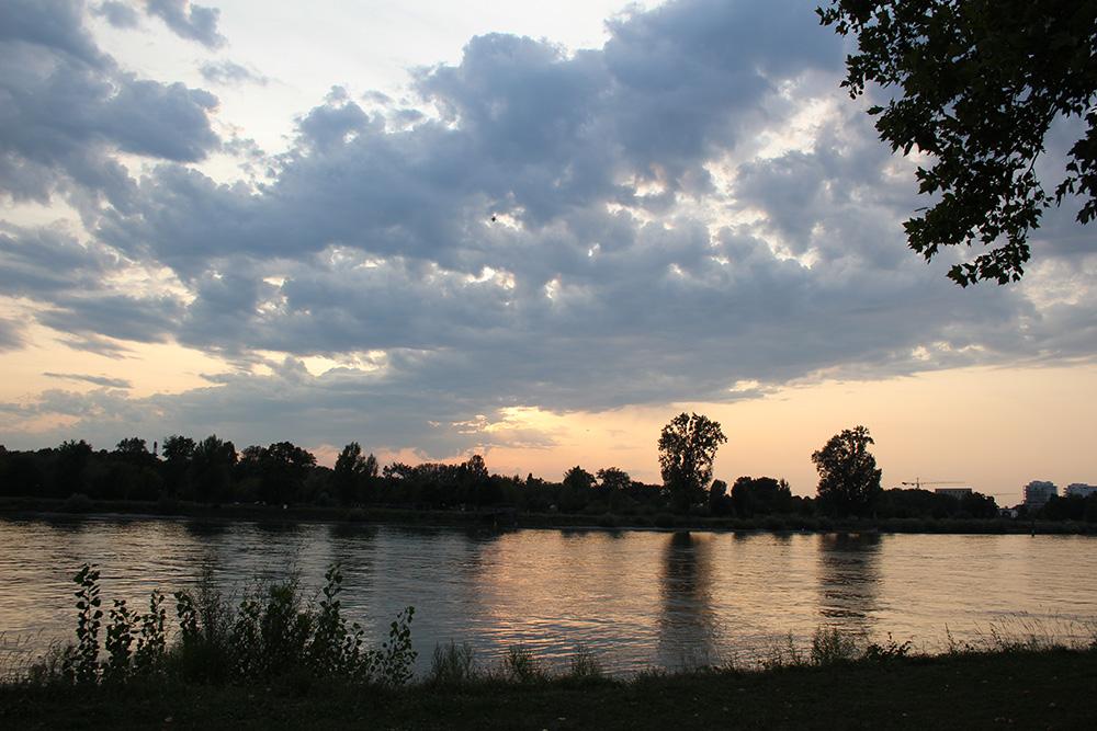 Een wandeling bij zonsondergang in Kehl am Rhein