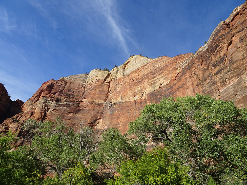 De canyon van Zion