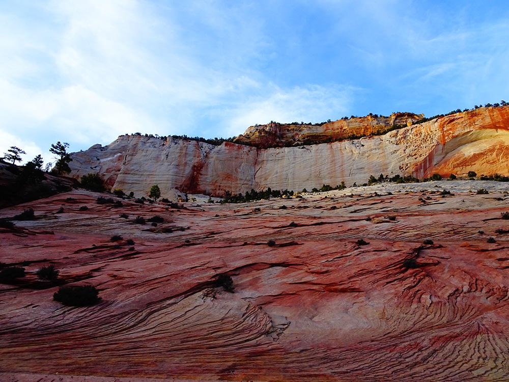Een kleurenpalet in de natuur - Zion National Park