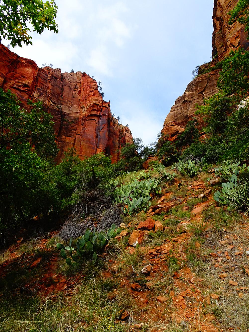 Het kleurrijke natuurpark Zion National Park