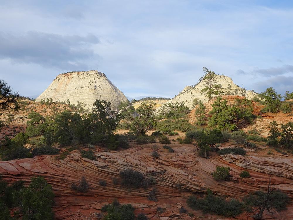 Het prachtige landschap van Zion - Zion National Park
