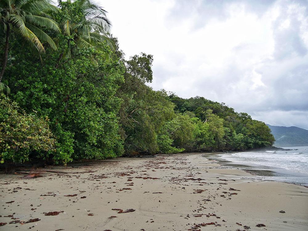 Prachtig strand omgeven door regenwoud