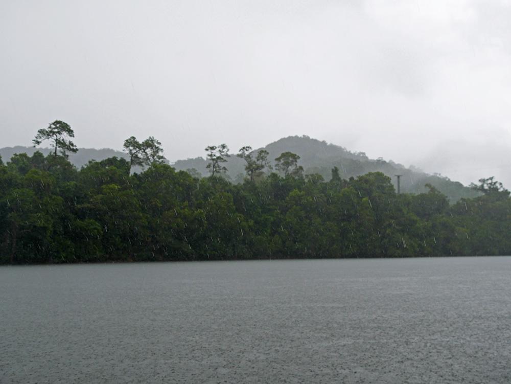Tropische regenbui tijdens de Daintree River Cruise