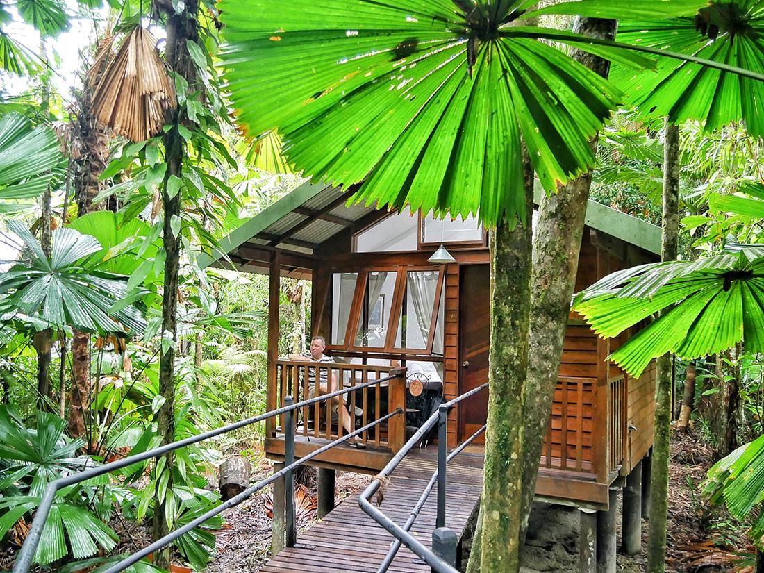Daintree Wilderness Lodge - overnachten in het regenwoud