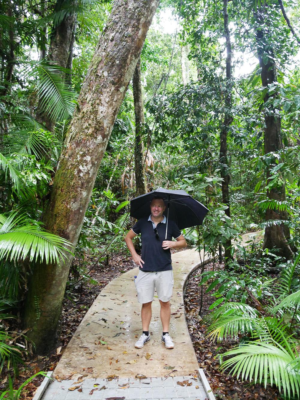 Hiken met een paraplu, je bent tenslotte in het regenwoud - Cape Tribulation